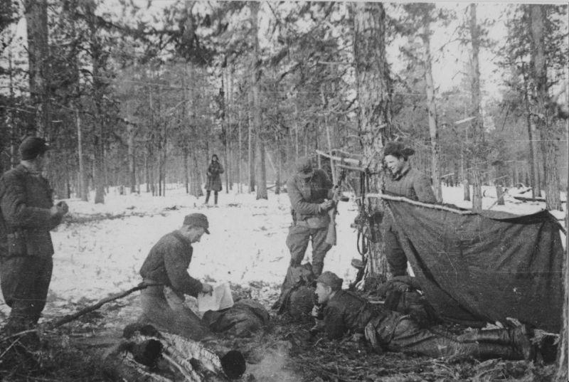 различных вариантах фото бойцов партизанского отряда им кравцова эффект