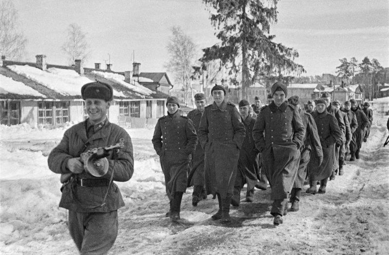 Боец РККА конвоирует колонну немецких солдат, плененных под Москвой.