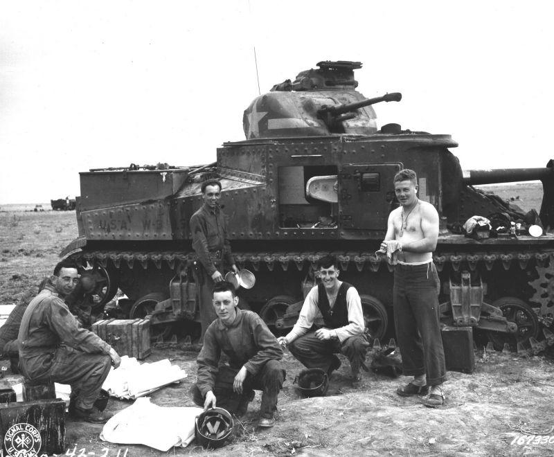 свойства досыльник танковый фото действующие