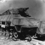 SdKfz_251-9_Ausf_D_246.jpg