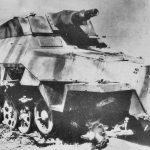 SdKfz_251-9_Ausf_D_Stummel_246.jpg