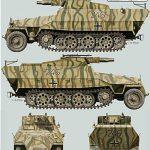 SdKfz_251-9_Ausf_D_246_1.jpg