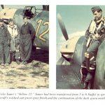 Messerschmitt-Bf-109F2-6.JG53-Yellow-12-Felix-Sauer-France-1941-01.jpg