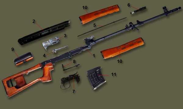 винтовка Драгунова (СВД). Устройство 01