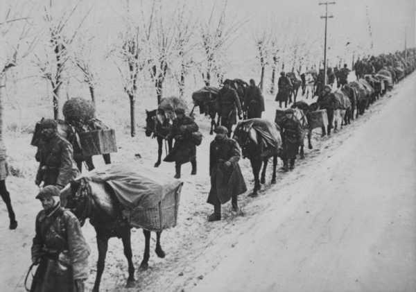 Румынские солдаты ведут навьюченных лошадей по дороге в окрестностях Севастополя