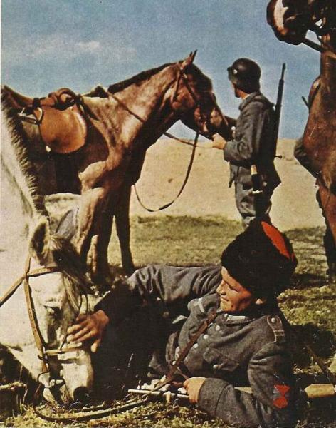 Cossacks in TR service