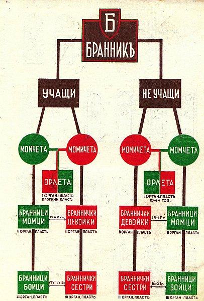 02 Оргструктура болгарской молодёжной организации «Бранник»
