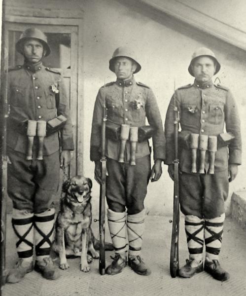 солдаты с винтовками Манлихера М1895. ПМВ 01
