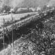 Транспортировка немецких пленных на железнодорожных платформах в северной Франции