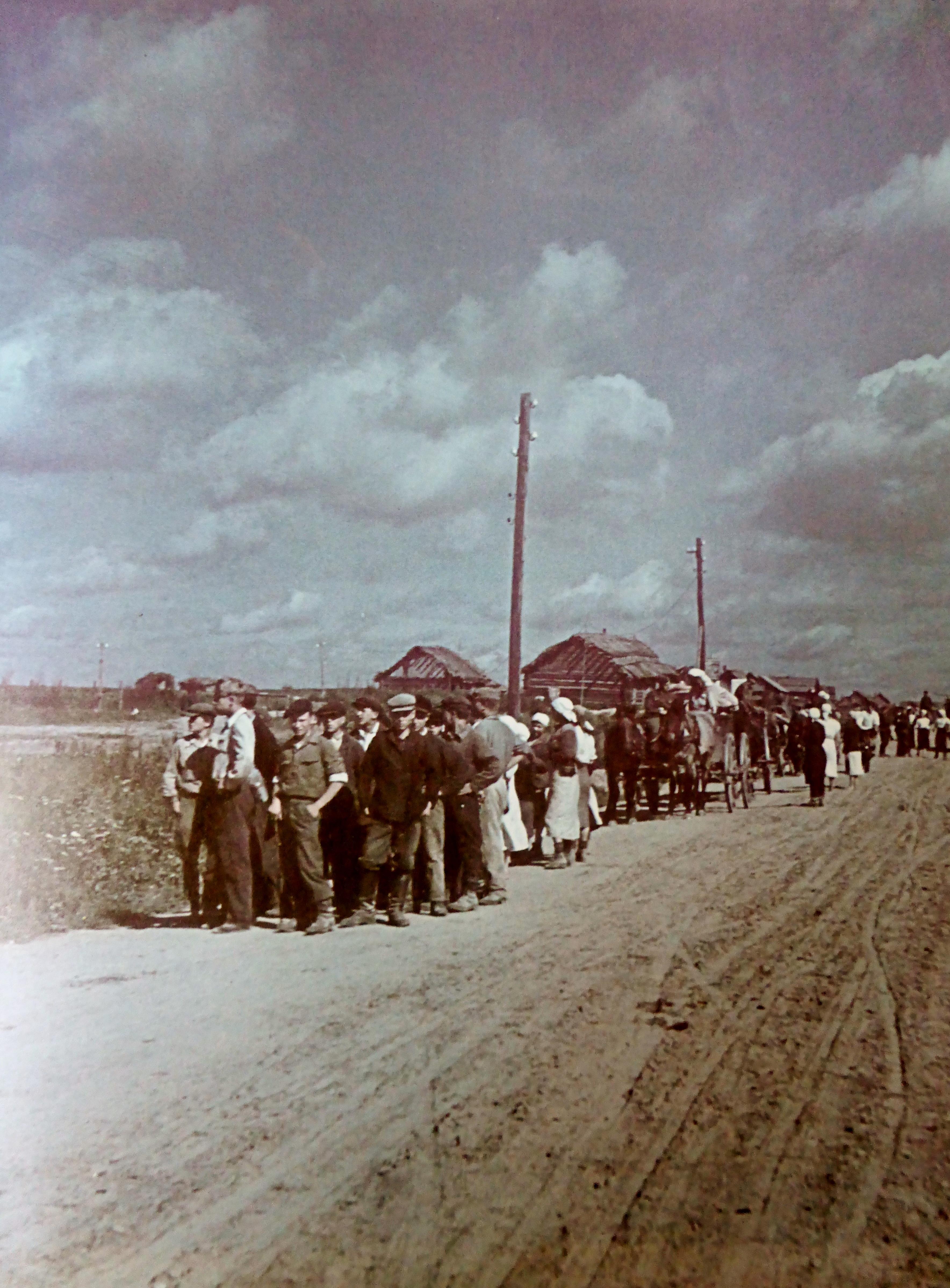 Колонна деревенских жителей на оккупированной территории СССР