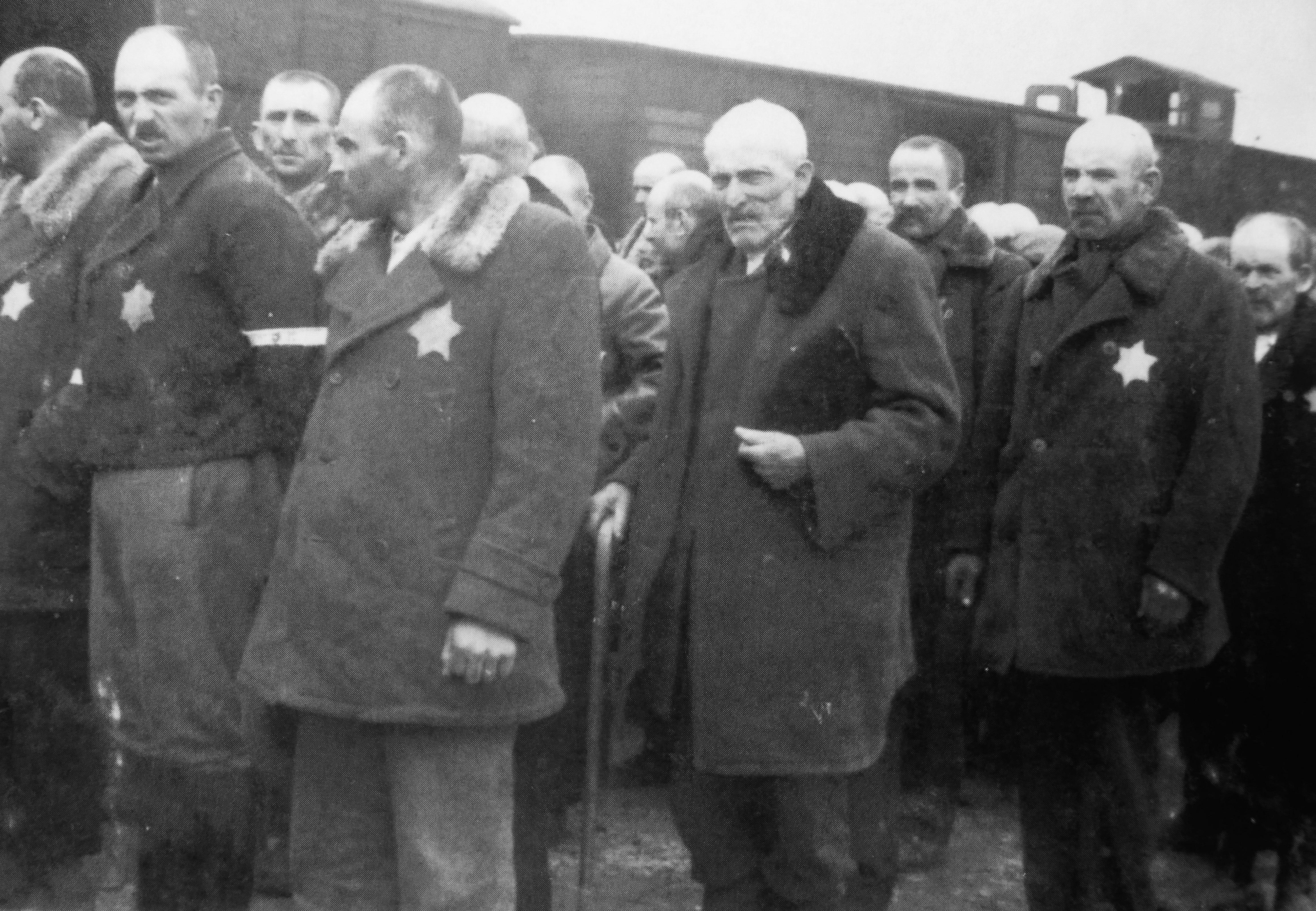 Венгерские евреи у поезда после прибытия в концлагерь Освенцим [7]