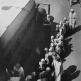 Посадка эвакуируемых детей в автобус на улице Ленинграда