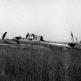Венгерские солдаты осматривают сбитый советский штурмовик Ил-2